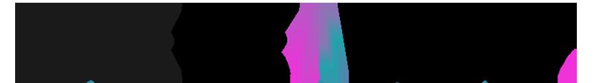 לוגו לידרס